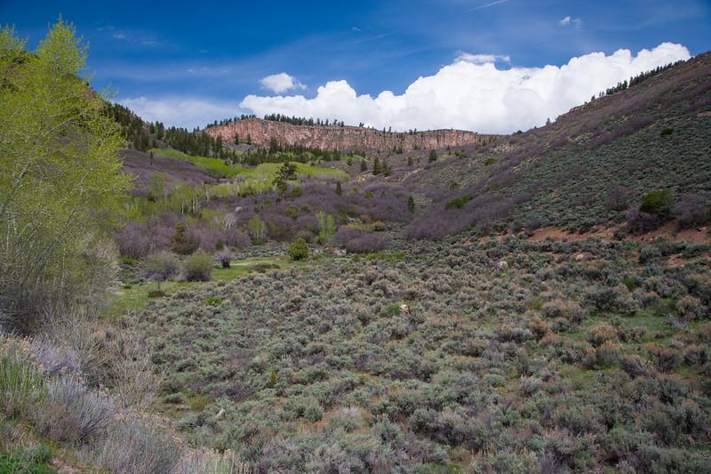 Colorado07-0098.jpg