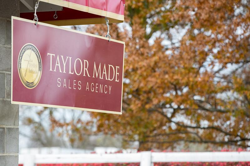 18_1108_TaylorMadeSalesGrounds_ww-2422.jpg