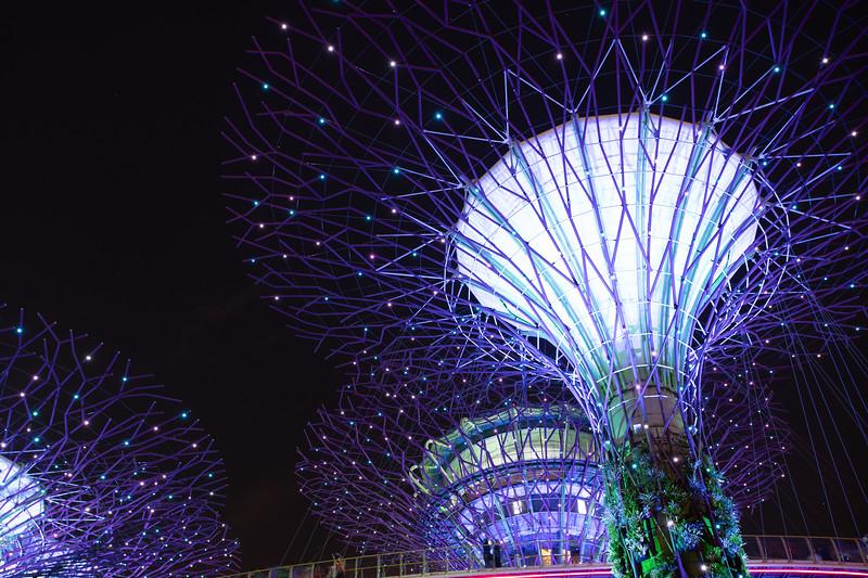 Singapore-19-195.jpg