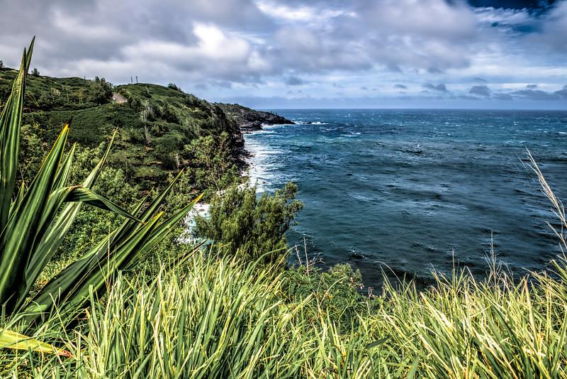 Maui-236-HDR.jpg