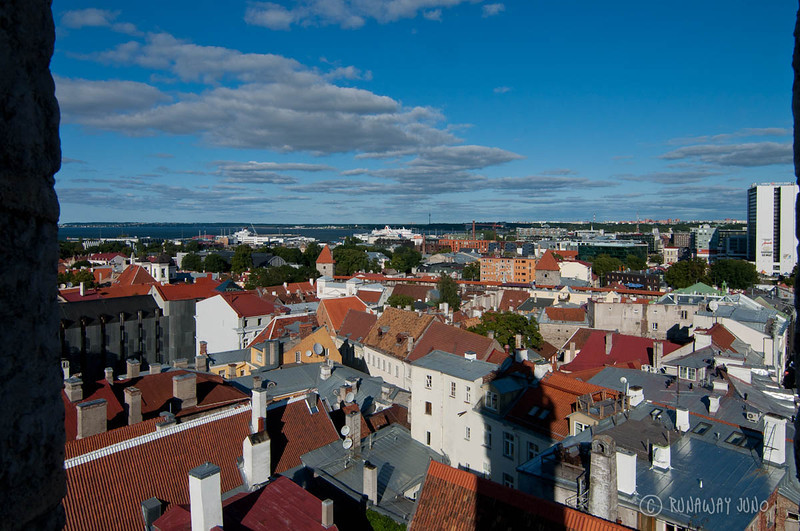tallinn-estonia-view-1275.jpg