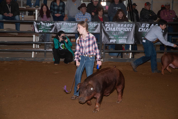 Clinton Swine Jackpot 1/6/2019