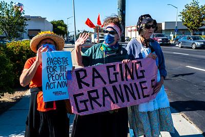 29 June 2021 San Jose / Santa Clara:  Deadline for Democracy Rally