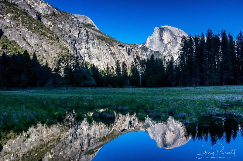 Half Dome Reflection in Cooks Meadow