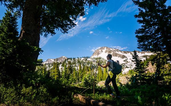 White Pine Hike