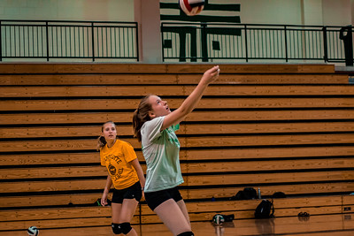 Alumni Volleyball Game