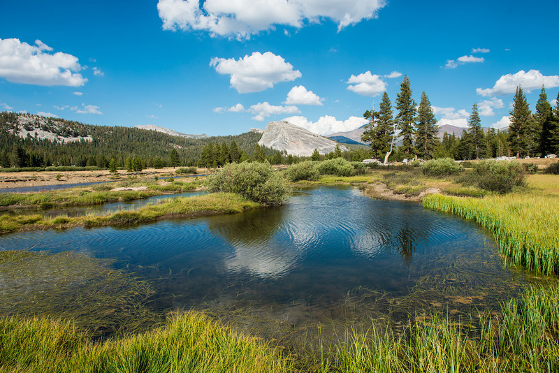 Lembert Dome reflects in the Tuolumne River