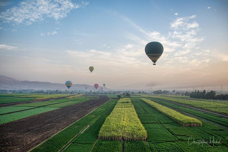 balloon_20130226_2488.jpg