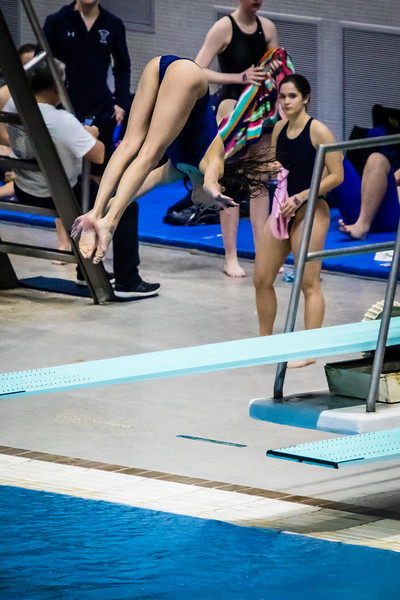 2018 UIL 5A State Swimming & Diving Championship-156.jpg