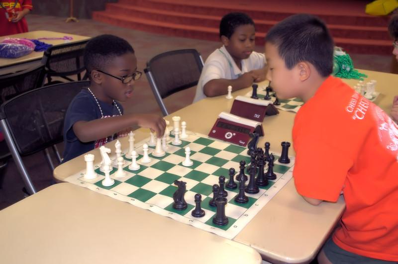 knight-chess (8) -1.jpg
