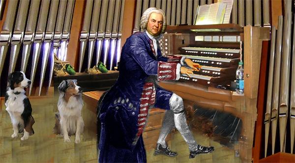 Bach.GaWy_650x360.jpg