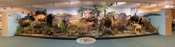 Card Wildlife Education Center