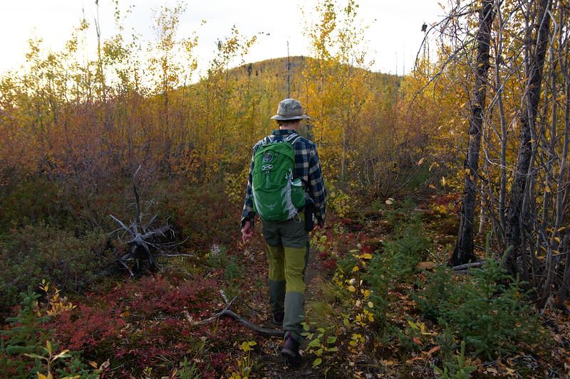 Hiking Granite Tors