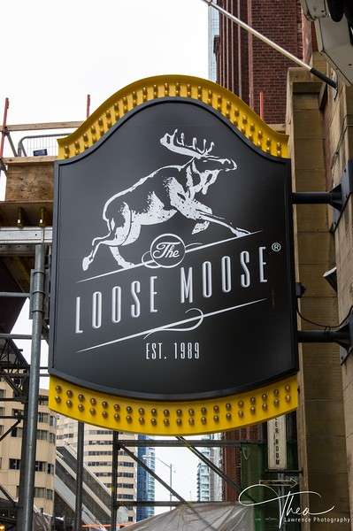 Loose Moose.jpg