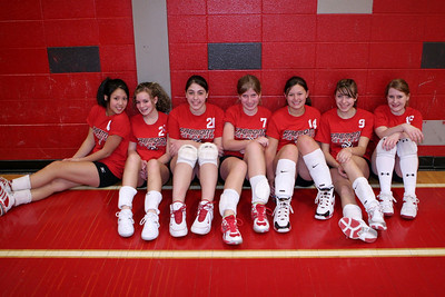 Girls Volleyball 8A - 3/12/2008 Newaygo