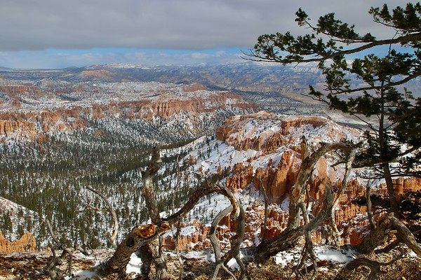 Bryce Canyon 2021 (Album 1)