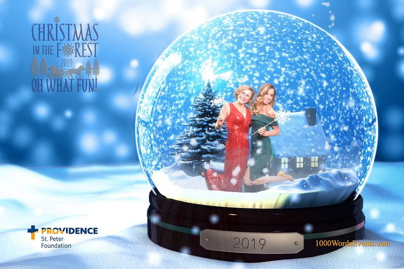 Providence Christmas Forest-102.jpg
