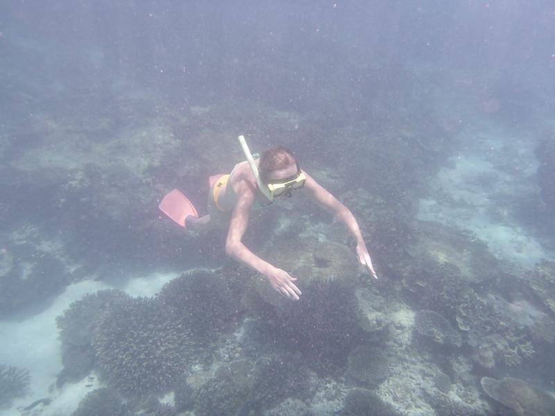 09. Lady Elliott Island-0073.jpg