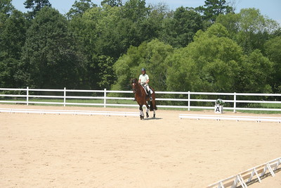 Bridle 18 Romke And Patricia Roberts