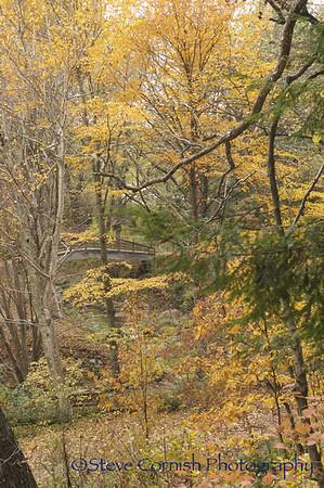 Western NC Fall