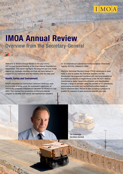 International Molybdenum Association Annual Review 2012