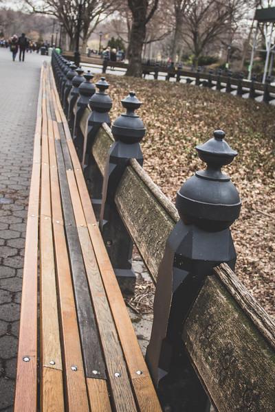 Central Park Bench-2828.jpg