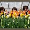 2018-03-10 Caper Elizabeth Park Rose Garden V(25) Martha Sandy Mom Kathy