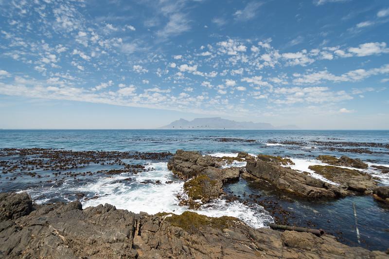 Cape-Town-222.jpg