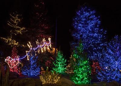 Christmas lights in Flagstaff