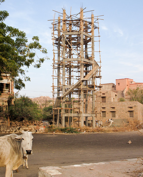 POW-Day 6 IMG_6337- Jodhpur.jpg