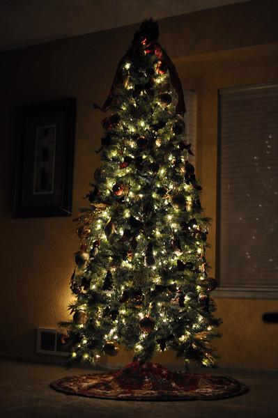 Nov '11 - Decorated Christmas tree