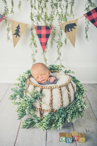 Rockford_newborn_Photography_L062.jpg