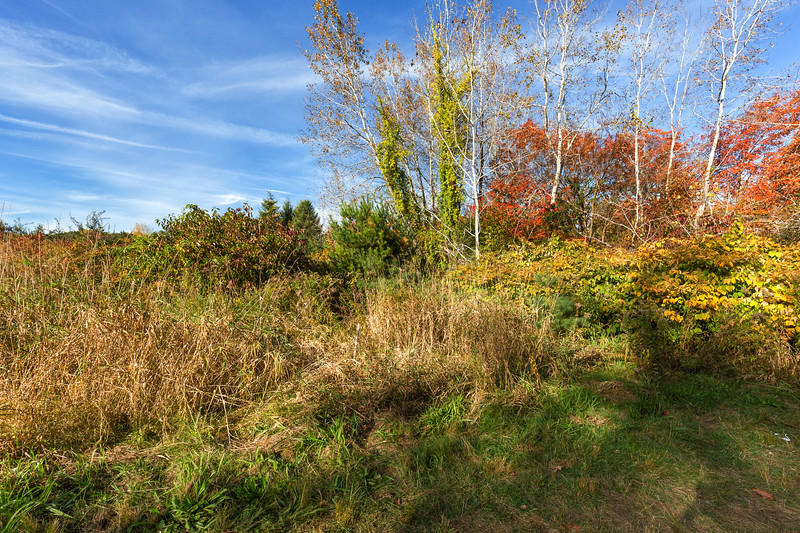 20171022_Apple Picking and other Fun_0075-Edit.jpg