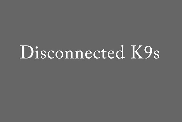 Disconnected K9s
