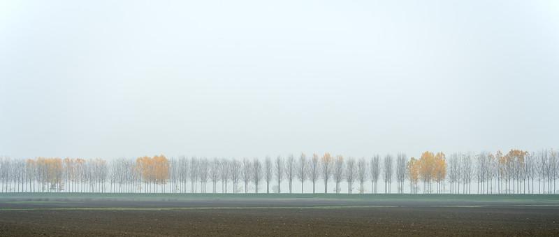 Autumn - Sant'Agata Bolognese, Bologna, Italy - November 26, 2012