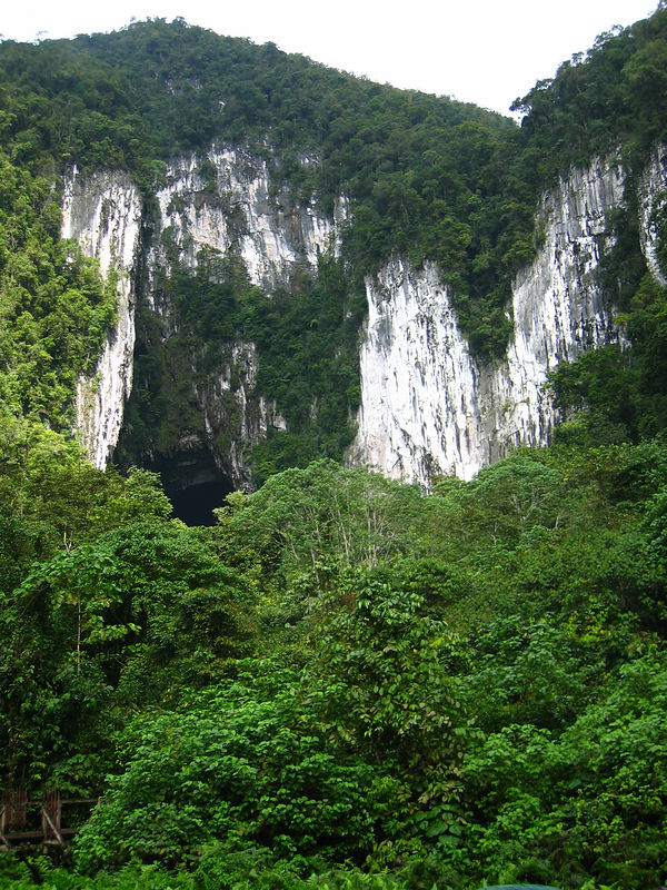 entrance to the world's largest cave chamber.  bats fly out in the evening.. mulu national park