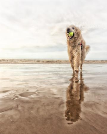 Luke at the Beach