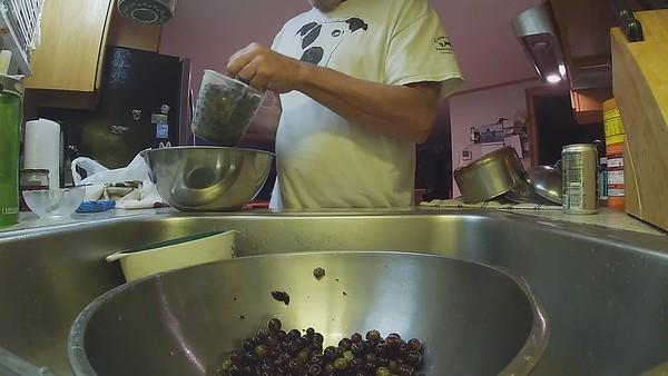 Concord Grape Pie 9-4-21