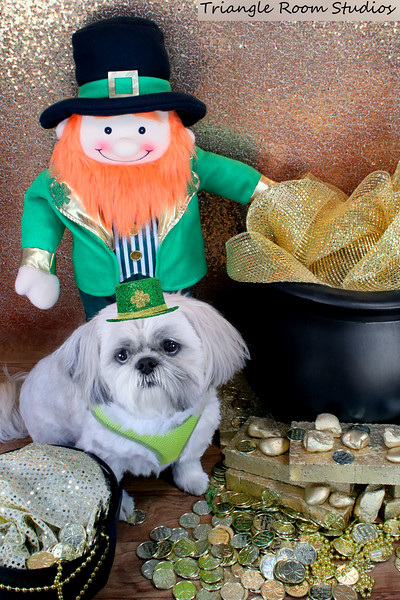Bentley's St. Pattys Day