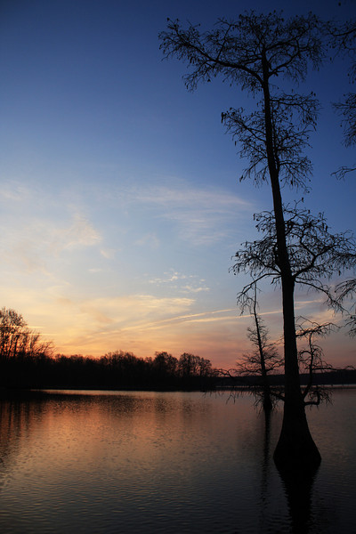 IMG_6578 Sunrise Lake Conway 6.jpg
