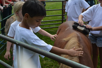 2015 Petting Zoo Summer Camp