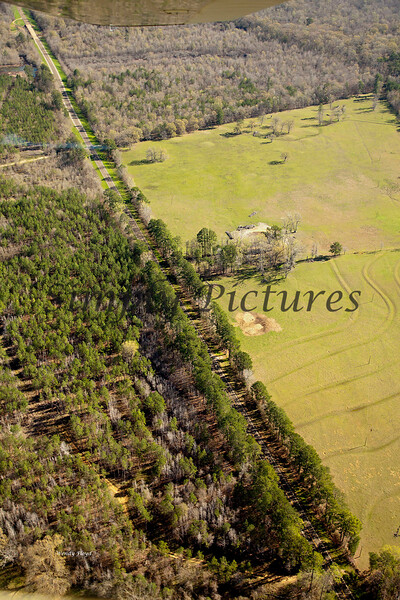 Neches River from the Air  047 copy