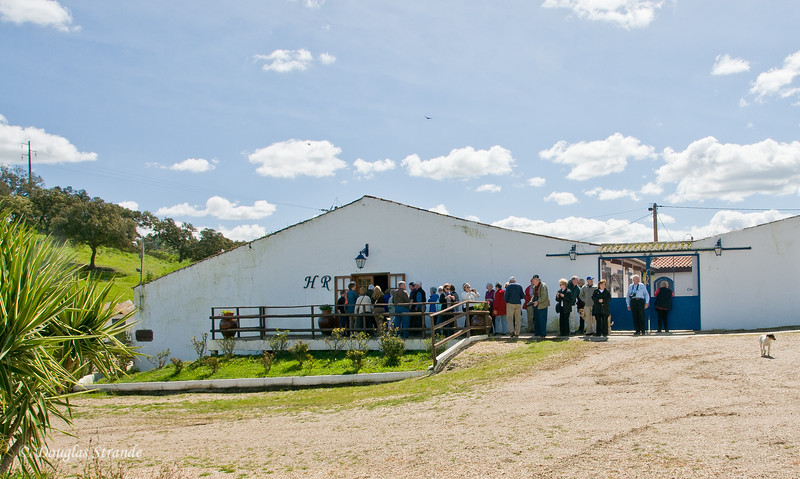 Wed 3/16 at the horse-breeding farm: We're on queue for a feast