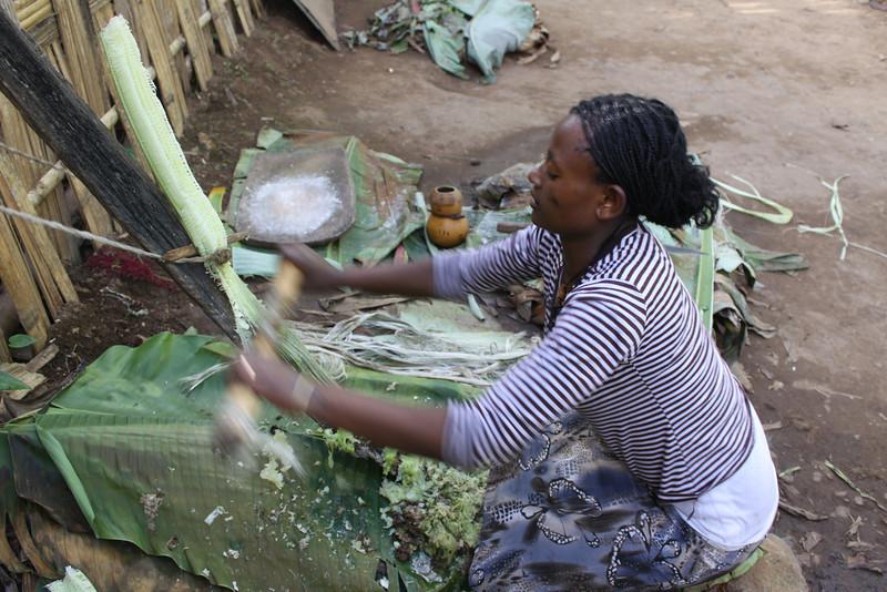 Ethiopia Nov 2013 162.JPG