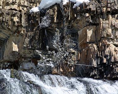 Jackson Hole 2005