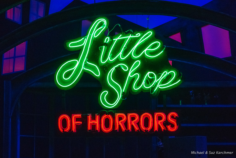 Little Shop of Horrors 2018 HR-59.jpg