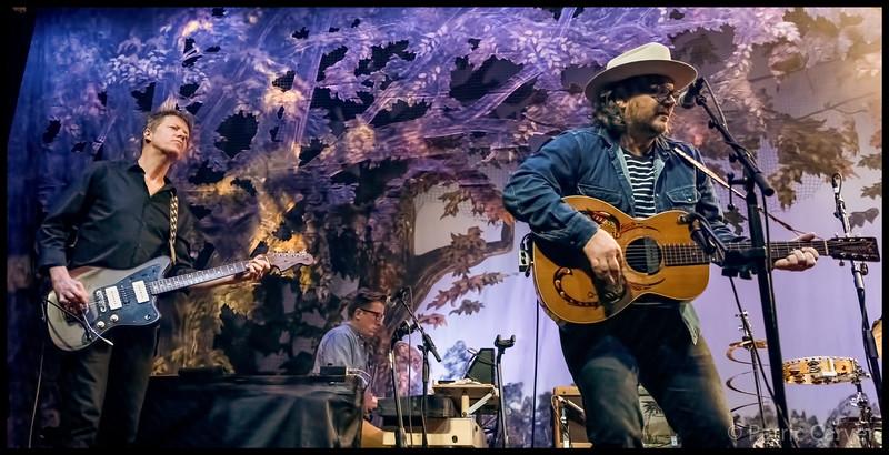 Wilco 9.jpg