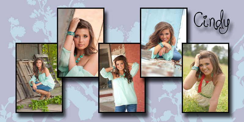 Cindy Nolan-photogenic