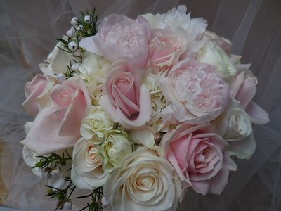 Pink peonies, white hydrangea pink and ivory roses, white boronia -$140