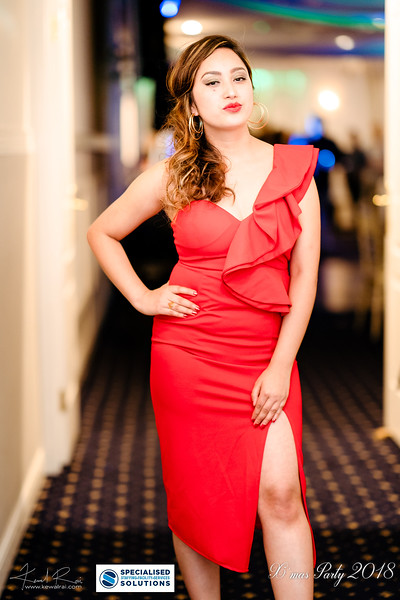 Specialised Solutions Xmas Party 2018 - Web (140 of 315)_final.jpg
